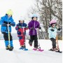 Лыжи для самоката